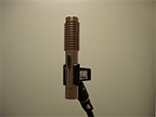 Royer R-121 Microphone